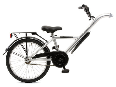 Golden Lion 20 Trailer Bike silver shiny + carrier